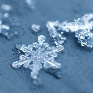 超寒がり社員、冷え込む加工場で冷凍機と戦うの巻……