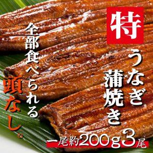 うなぎ蒲焼き200g3尾セット