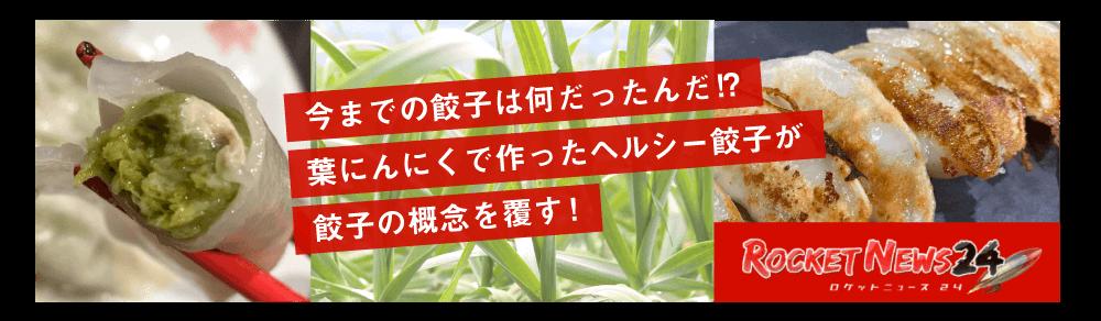 今までの餃子は何だったんだ!?葉にんにくで作ったヘルシー餃子が餃子の概念を覆す!