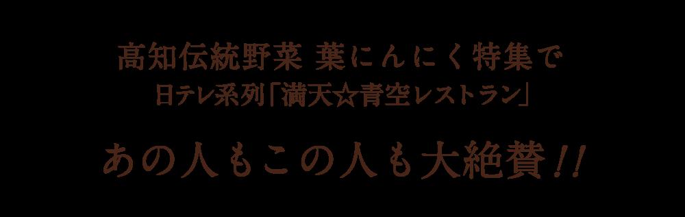 日テレ系列「満天☆青空レストラン」高知伝統野菜 葉にんにく特集であの人もこの人も大絶賛!!