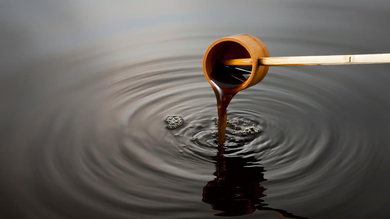 アースエイドの葉にんにくぬたカルパッチョソースは無添加の塩ポン酢を使用