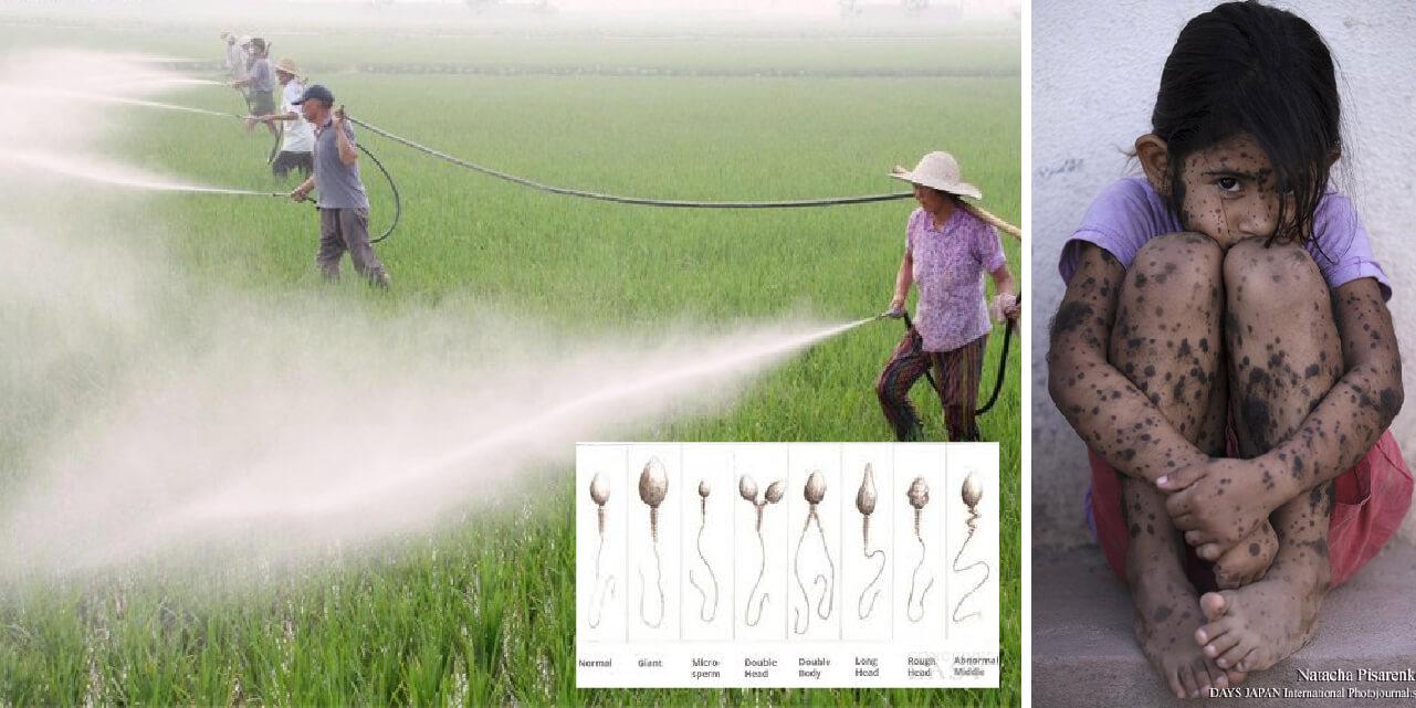 医食同源、農薬等の化学物質がカラダに及ぼす影響や本当の怖さを知っている方