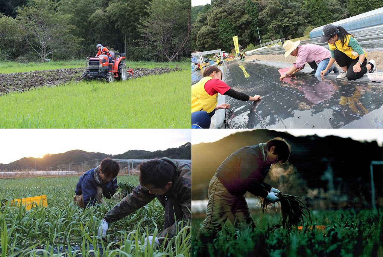 安心安全の有機JAS認定-自社農園栽培