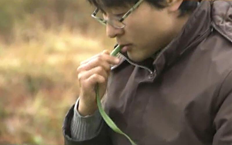 有機JAS認定 自社オーガニック農園で葉にんにくの味と香りの確認