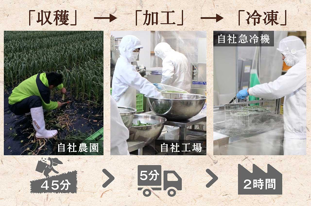 6次産業化による高鮮度時短製造(収穫加工冷凍処理超速)